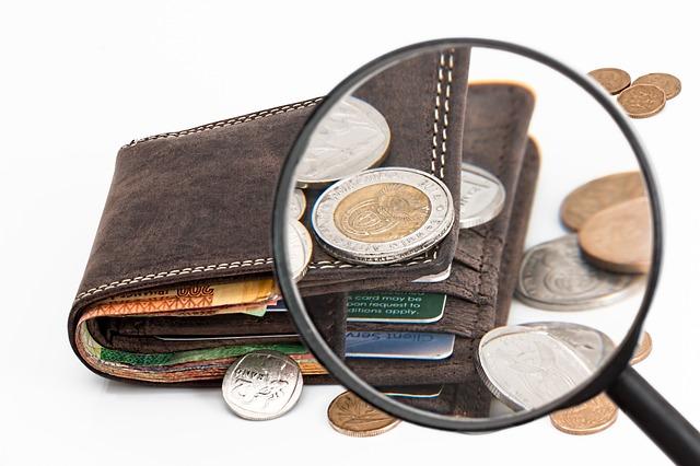 peněženka pod lupou.jpg