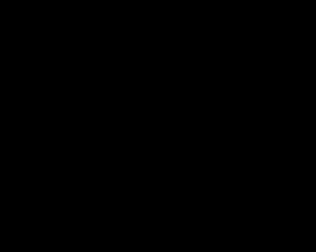 silueta megafonu